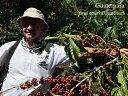 グァテマラ/サンタカタリーナ農園 GR カンパメント