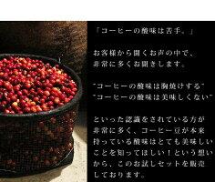 \飛脚メール便発送可能/上質な酸味飲み比べ3種類お試しセット|浅煎り|コーヒーギフト|コーヒーセット|コロンビア|エチオピア|東ティモール|プレゼント|贈り物|プチギフト|【組み合わせ自由!コーヒー豆800g以上ご注文で送料無料】