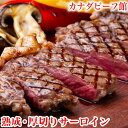 ステーキ サーロイン ステーキ肉 サーロインステーキ バーベキュー 肉 熟成肉 ギフト BBQ 食材 キャンプ 赤身 ギフト 冷凍食品 熟成・厚切りサーロインステーキ300g お取り寄せグルメ お取り寄せ グルメ