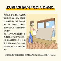 【送料無料】【モットンジャパン】高反発マットレス140N170N280Nダブル10cm