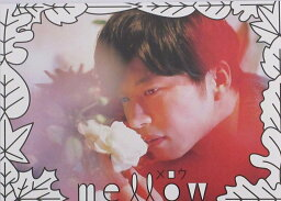 【映画パンフレット】 『mellow』 出演:田中圭.岡崎紗絵.ともさかりえ
