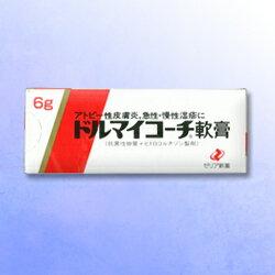 【ゼリア新薬】ドルマイコーチ軟膏 6g【第(2)類医薬品】【after0307】
