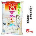 【新米】【山口県産米】【農協直販】 下関 きぬむすめ 5kg