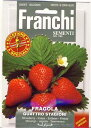 FRANCHI社-イタリア野菜の種【四季なりイチゴ】