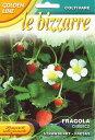 【イタリアの草花の種】 FRANCHI社 森の苺 ウッドランドストロベリー