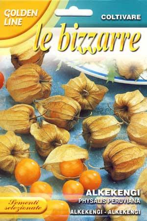 【イタリアの草花の種】FRANCHI社-イタリア野菜の種【食用ホウズキ】