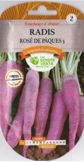CATROS,Inc.新法國-法國蔬菜種子蘿蔔紫色
