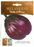 【イタリアの野菜の種】 ナス・フィレンツェ《固定種》[COD.BSOMLA001]