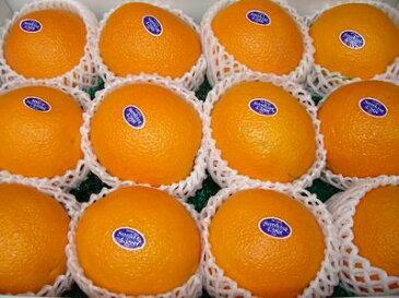 カリフォルニア産ネーブルオレンジ15玉入り