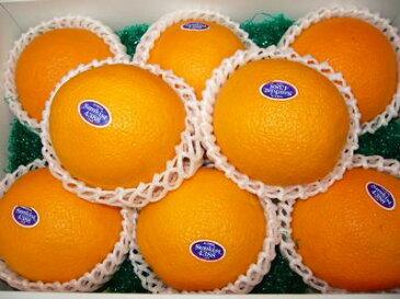 カリフォルニア産ネーブルオレンジ8玉入り