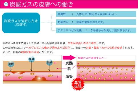 炭酸化粧品スキンローションノーマルさらっと化粧水