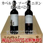 大人気品種カベルネ・ソーヴィニヨン飲み比べ!赤ワイン2本セット 【赤ワインセット】 チリ産 ワイン ワインセット wine