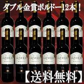 送料無料 ラフォレ ダブル金賞受賞ボルドー12本 日本に届いた状態のカートンのままお届け ボルドー 金賞ワイン セット 赤ワインセット 赤 赤ワイン ワインセット フルボディー コク旨 ワイン セット 金賞