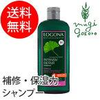 【ロゴナ(LOGONA)】リペアシャンプー・イチョウ250ml(シャンプー)/ヘアケア/ノンシリコン/低刺激/天然/ナチュラル/自然/ダメージヘア