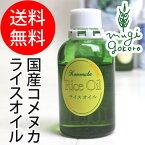 【かつらぎ】ライス・オイル60ml(フェイス&ボディマッサージ、美容オイル)