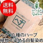 【ナイアード】ヘナ+10種のハーブ(オレンジ〜赤褐色)400g(白髪染め)