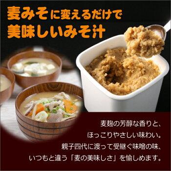 4味噌の説明A