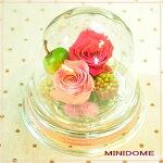 【ミニドーム】プリザーブドフラワーギフトとハイドロカルチャーなど観葉植物のお店ムニュムニュ【FlowerMunyuMunyu】