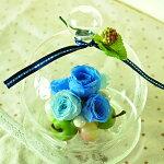 【フルーツドーム♪アップル&グレープ】プリザーブドフラワーギフトとハイドロカルチャーなど観葉植物のお店ムニュムニュ【FlowerMunyuMunyu】