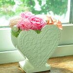 【CANDY】プリザーブドフラワーギフトとハイドロカルチャーなど観葉植物のお店ムニュムニュ【FlowerMunyuMunyu】