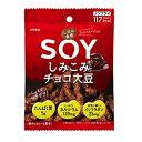 大塚食品 しぜん食感 SOY しみこみチョコ大豆 1袋(24...