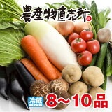 野菜セット 8〜10品 野菜詰合せ 産地直送 季節野菜