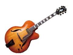 【送料無料】【smtb-u】D'Aquisto/ダキスト DQ-JZ VLB(Violin Burst) フルアコギター 【ハード...