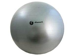 立花龍司氏監修アイテムPromark/プロマーク TPT0275 バランスボール (レベル4)