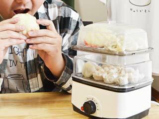 THANKO サンコー 肉まん・焼売・温野菜!手軽でカンタン電気蒸し器 卓上ひとりフードスチーマー FODSTM01