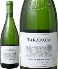 タラパカグラン・レゼルバソーヴィニヨン・ブラン[2010]<白><ワイン/チリ>