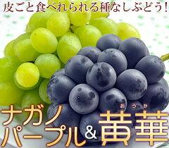敬老の日にプレゼントする果物