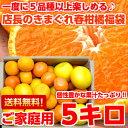 個性豊かな果汁たっぷり♪5種類以上の柑橘が楽しめる店長のきまぐれ春の柑橘福袋 たっぷり5kg【北海道 ...