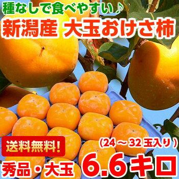 送料無料 おけさ柿 柿 フルーツギフト種なしだからとっても食べやすい♪新潟産おけさ柿 秀品たっぷり約6.6kg【北海道、沖縄、一部離島は別途800円】