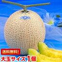 お中元 ギフト プレゼント メロン 送料無料生産地ならではのこだわりメロン大玉静岡温室メロン1.5kg×1個(化粧箱入り)北海道、沖縄・一部離島は発送不可