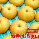 北海道、沖縄・一部離島は発送不可高い糖度とシャキシャキした果肉は絶品♪ハイテク光センサーで僅かしか選果されない赤梨の王者!南水梨 特秀エクセレント4.5kg