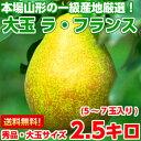 送料無料 ラフランス 洋梨 フルーツギフト豊かな香り、とろ〜...