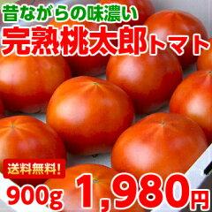 【送料無料】やっぱり味の濃さが違う♪店長がお取り寄せしている名人が作った完熟桃太郎トマト約90…