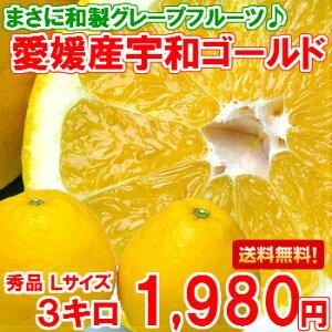 送料無料!和製グレープフルーツと呼ばれる柑橘【送料無料】やっぱり国産は味と香りが違う♪和...
