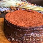 京豆腐のチョコレートケーキ(4号型)卵不使用乳不使用小麦粉不使用白砂糖不使用アレルギー対応グルテンフリー