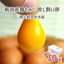 放し飼い卵 30個 純国産鶏 もみじ 岡山県美作市産 天真卵まん 赤……