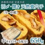 活〆・開き 天然真穴子 (生・冷蔵) 中サイズ 650g (4〜5尾) 島根県山陰沖産 送料無料