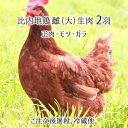 ねぎみ 30本 ・ねぎま 国産 冷凍 焼鳥 やきとり 鶏肉 お肉 美味しいもの おいしいもの お取り寄せ お取り寄せグルメ まとめ買い バーベキュー ねぎま 送料無料
