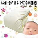 Baby_umou_top