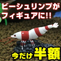 EBIマイフィギュア【人気のレッドビーシュリンプを完全フィギュア化】