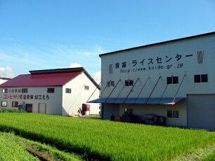 倉庫で一年間お米を低温保存しています。