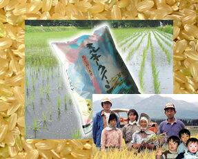 26年度産新米 5kg新潟県妙高より農家直送でお届けします。(玄米)湧き水で育ったミルキークイ...