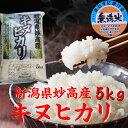 【無洗米】 新潟県 妙高産キヌヒカリ 5kg「28年産 無洗米」