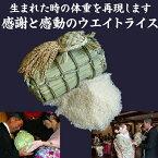 3kgの米俵に2000g〜2500g用(出生体重に合わせて作成します)
