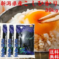 コシヒカリ30kg(送料無料)