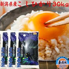 「送料無料」コシヒカリ30kg(無洗米)